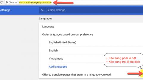 Hướng dẫn cách tắt bật dịch tự động trình duyệt Chrome